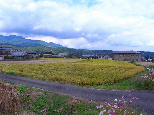 由布市の行政の中心A|土地|九州の田舎暮らしを応援する 大分 ...